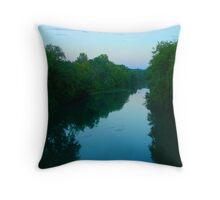 Frog Bayou Throw Pillow