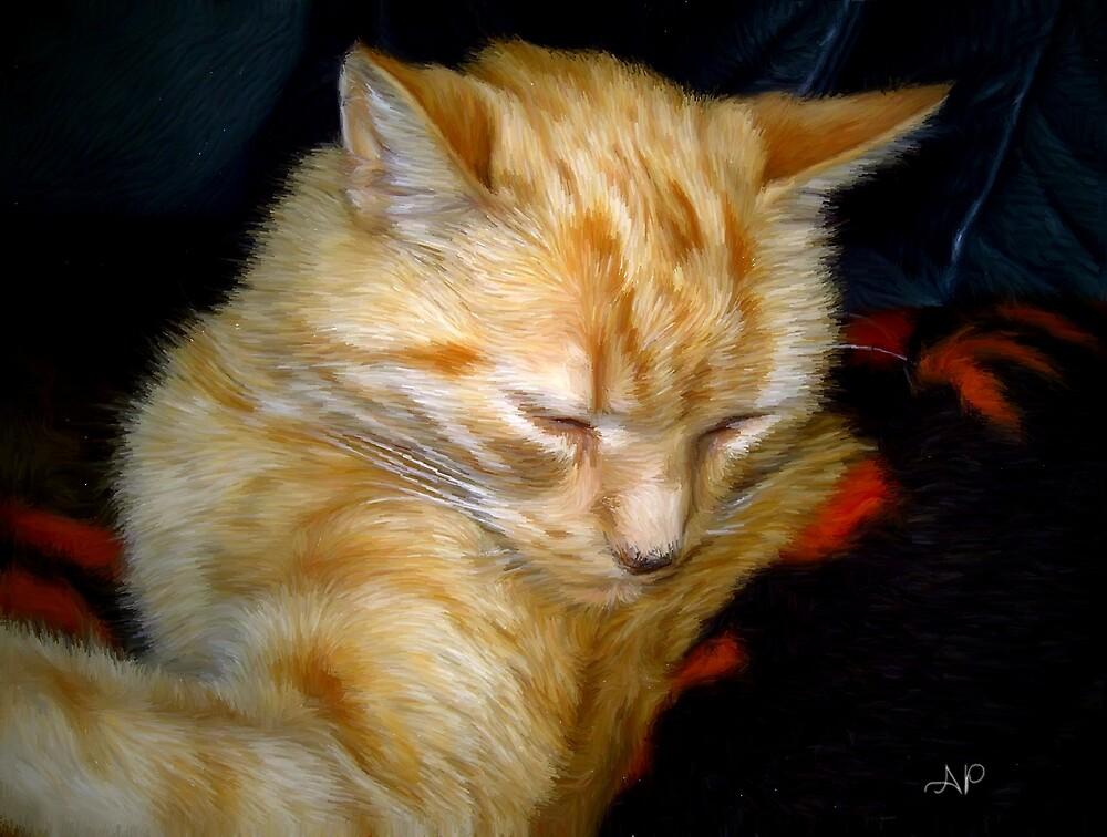 Orange Tabby Cat by Andrea Maréchal