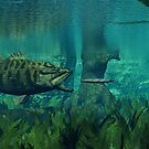 Smallmouth Bass on the Chase by Walter Colvin