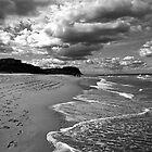 A walk along the beach by lexphoto