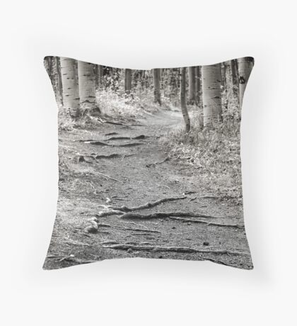 Kenosha Throw Pillow
