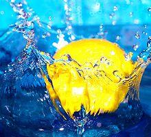 Lemon Splash by Tammy Hale