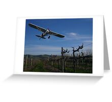 plane, from aerodrome on Colville Rd., Aldinga Beach. Greeting Card
