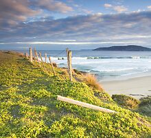 Goats Beach, Tasmania by Alex Wise