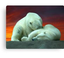 Polar Beauty Canvas Print