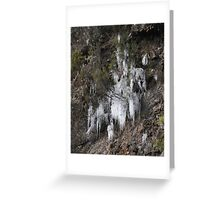 Ice crystals 2 Greeting Card