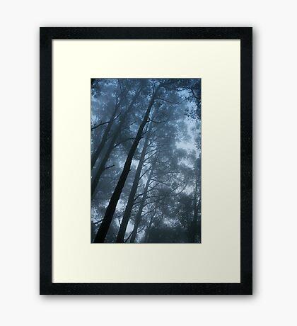 Saturday Fog Framed Print