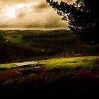 Blackwood Campsite Vista by Peter Evans