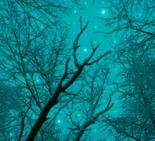 Simply Stare Upward (Dark Winter Sky / Winter Forest) Sticker
