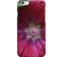 Scarlet Splendor iPhone Case/Skin