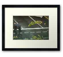 Why Fight? Framed Print