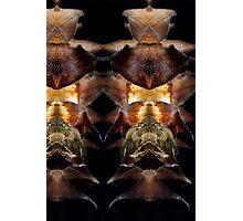 Pattern series 10 Photographic Print