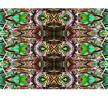 pattern series 13 Photographic Print
