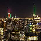 New york City by Ron Finkel