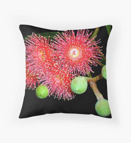 Red Flowering Eucalyptus Throw Pillow