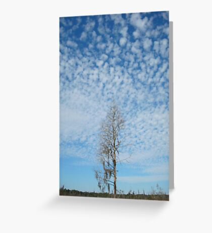 Cypress Under a Popcorn Sky Greeting Card