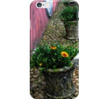 Flower Pots - Pena National Palace iPhone Case/Skin