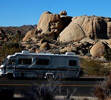 RV at Joshua Tree by Amanda Huggins