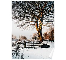 Snow and sunshine Poster