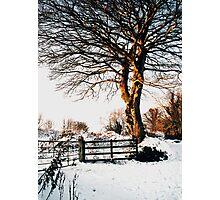 Snow and sunshine Photographic Print