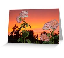 FLOWERS AS BEAUTIFUL AS THE SUNSET  Greeting Card