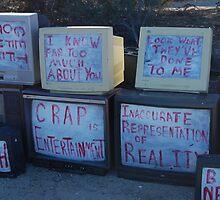 real reality tv by Amanda Huggins
