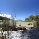 Bruny Island's Cloudy Bay Lagoon - edge by gaylene