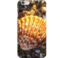 Sunlit Shell & Fragments #1 iPhone Case/Skin