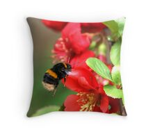 Bee on Japonica 1 Throw Pillow