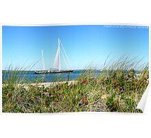 #513   Grassy Dune & Yacht Poster
