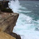 Eaglehawk Neck cliffs - s.e. Tasmania by gaylene