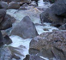 A River Runs Through by Carol Barona