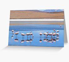 Flamingoes in the Volcanic Salar Laguanas Greeting Card