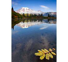 Autumn Suspended Photographic Print