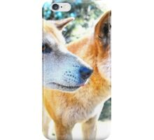 Australian Native Dingoes: Tyipa & Cooinda iPhone Case/Skin