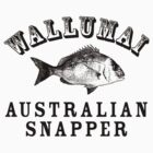 Wallumai (Snapper) by Yvette Bell