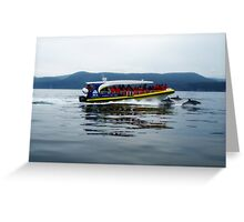 Eco Adventure Cruise - Bruny Island Greeting Card