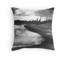 Drought on the Murray Throw Pillow