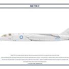 BAC TSR-2 XR222 by Claveworks