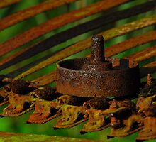 Rusted Through by Andy Mueller