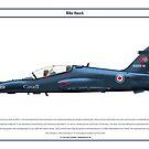 Hawk Canada 1 by Claveworks