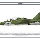 Hawk Finland 1 by Claveworks