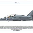 Hawk Finland 2 by Claveworks