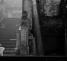 Lose the light. by Francisco Larrea