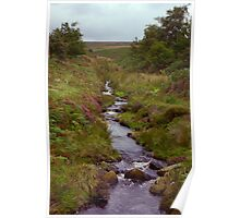 Ousegill Beck - North York Moors Poster