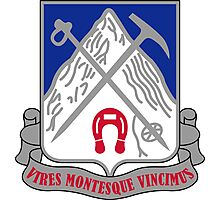 87th Infantry Regiment - VIRES MONTESQUE VINCIMUS - We Conquer Power and Mountains Photographic Print