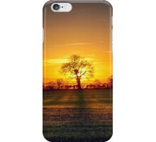 The sun and the tree iPhone Case/Skin