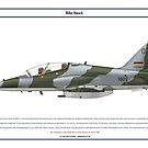 Hawk Kenya 1 by Claveworks