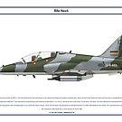 Hawk Kenya 2 by Claveworks