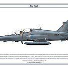 Hawk Malaysia 1 by Claveworks